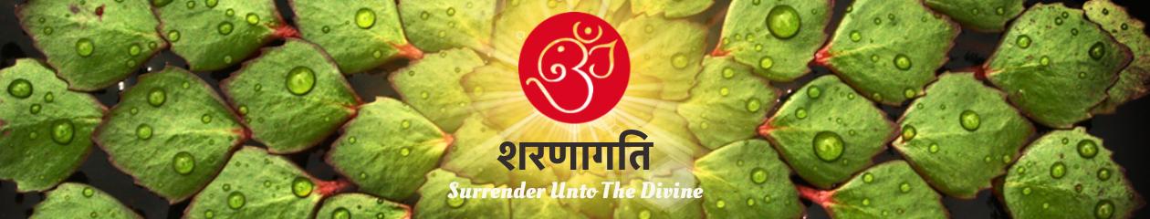 Saranaagathi